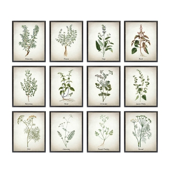 Ot Tuval Sanat Boyama Vintage Bitkisel Resimler Posterler Ve