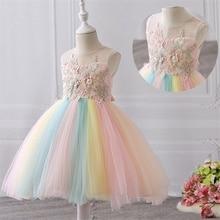 2019  fancy princess dress for Girl Party Tutu Dresses Wedding embroidery Flowers Dress Children New Year Wear
