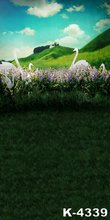 Natural Scenery Photo For Background Photography 5x7ft Popular Blue Sky White Clouds And Swan Backdrops Vinyl Photo Studio Props