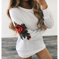Autumn Tunic Embroidery Blouse 2017 Top Transparent O Neck White Women Long Sleeves Tunic Plus Size