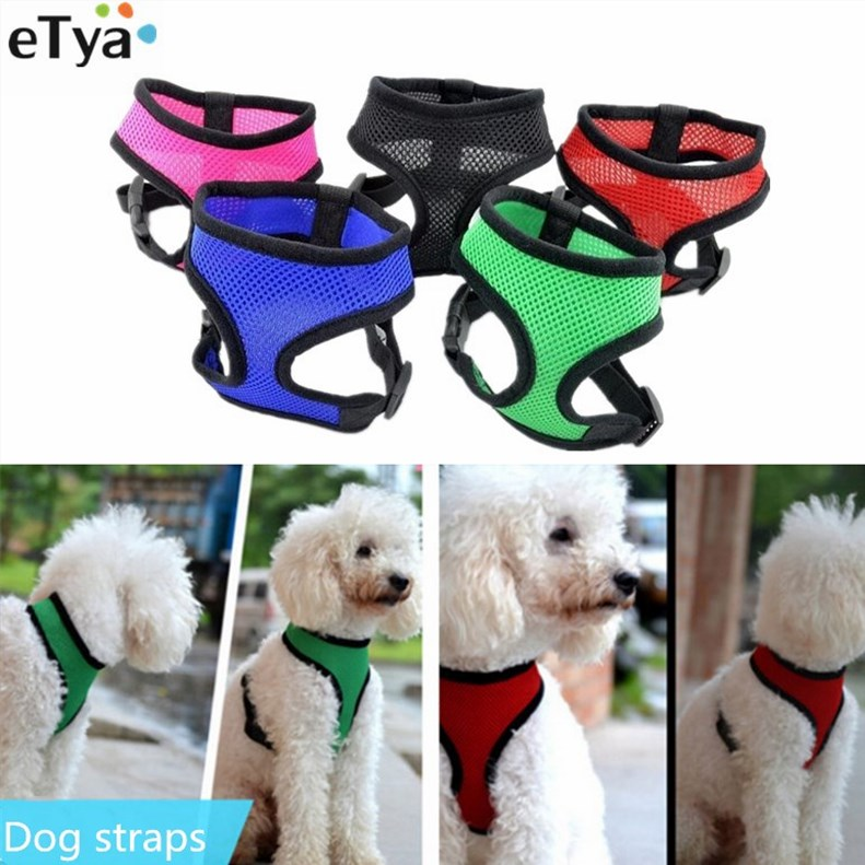Dog Collars & Leads Hot Winged Wing Dog Harness Vest For Chihuahua Pet Supply Adjustable Leash Collar Lead Breast-band Solid Harnas Hond Walking E Goods Of Every Description Are Available