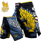 VSZAP Kirin Boxing F...