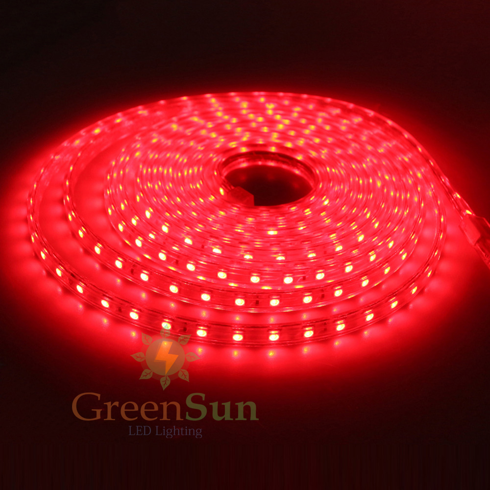 Red LED Strip Light 5 20M 60 LEDs/ Meter Ultra Bright 5050 SMD LED Outdoor  Garden Home Strip Rope Light Waterproof