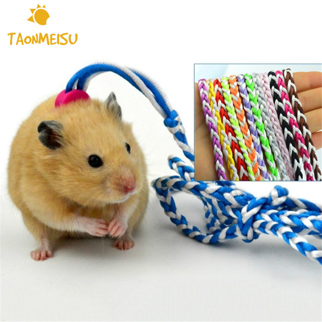 Adjustable twisted cotton rope traveling hamster traction rope leash adjustable twisted cotton rope traveling hamster traction rope leash collar for guinea pig pets hamster training publicscrutiny Image collections