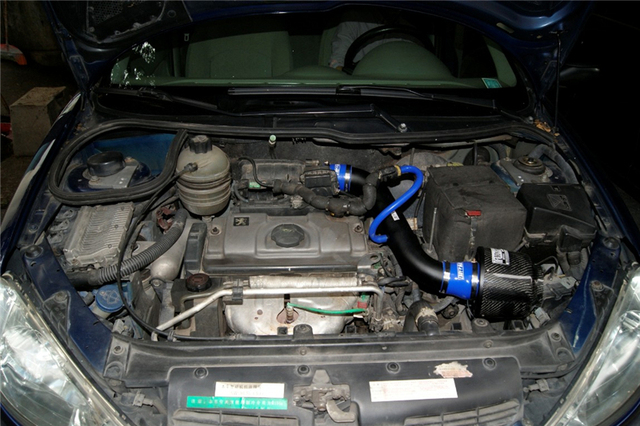 734e6f9a8579 Free Shipping For Peugeot 206 1.4L 1.6L CF-A High Performance Carbon Fiber