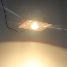 800W 3000K 3500K 4000K LED Grow Light COB Full Spectrum including UV IR Daisy Chain For Indoor Hydroponics Plants