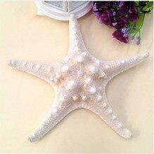 handicrafts starfish, fashion sea