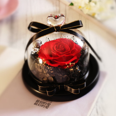 Christmas Gifts Glass Cover Fresh Preserved Rose Flower Wedding Home Birthday Party Car Decoration