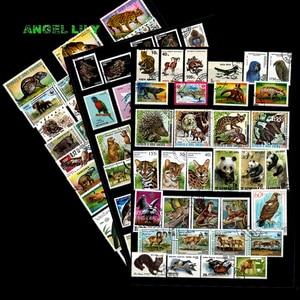 Image 1 - 200 ADET HIÇBIR Repetiton Konu Vahşi Hayvan Kullanılmayan Posta Pulları, posta pulları Sonrası Işareti Koleksiyonu 200