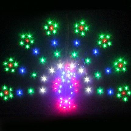 Cerf-volant professionnel 1.5 mètres carrés alimentation LED cerf-volant/cerfs-volants animaux avec 48 lumières