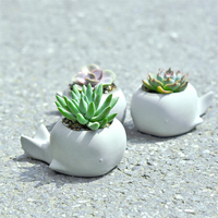 Succulent plants flower pot silicone mold cartoon animal whale shape garden plants creative concrete mold gypsum pot mold