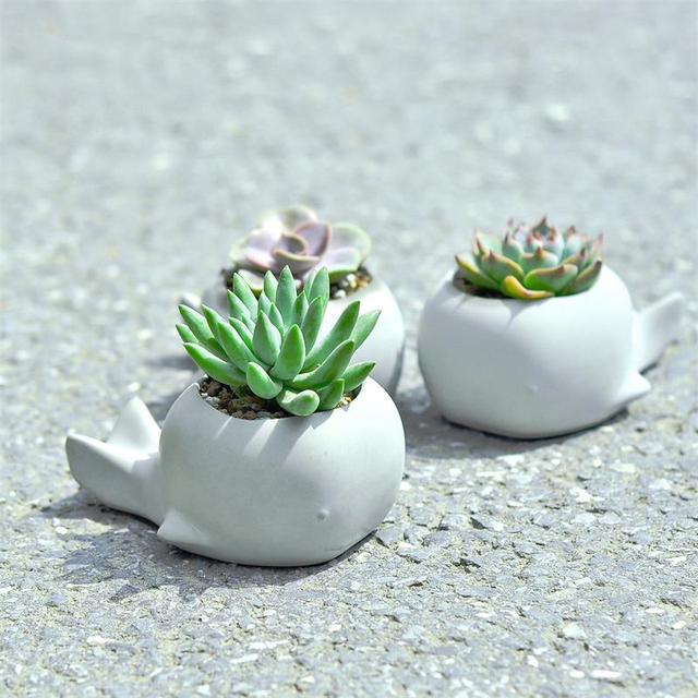 Succulent plants flower pot silicone mold cartoon animal whale shape garden plants creative concrete mold gypsum pot mold