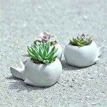 Succulent พืชดอกไม้หม้อซิลิโคนแม่พิมพ์การ์ตูนสัตว์ whale shape สวนพืชสร้างสรรค์คอนกรีตแม่พิมพ์ยิปซั่มหม้อแม่พิมพ์