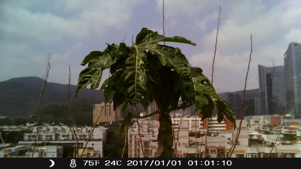 K0512D1- (1)