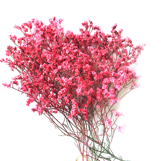 Natural Dried Flowers Yunnan Crystal Flowers Real Flowers Art Living ...