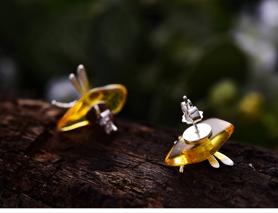Cute-Dragonfly-LFJA0052_06