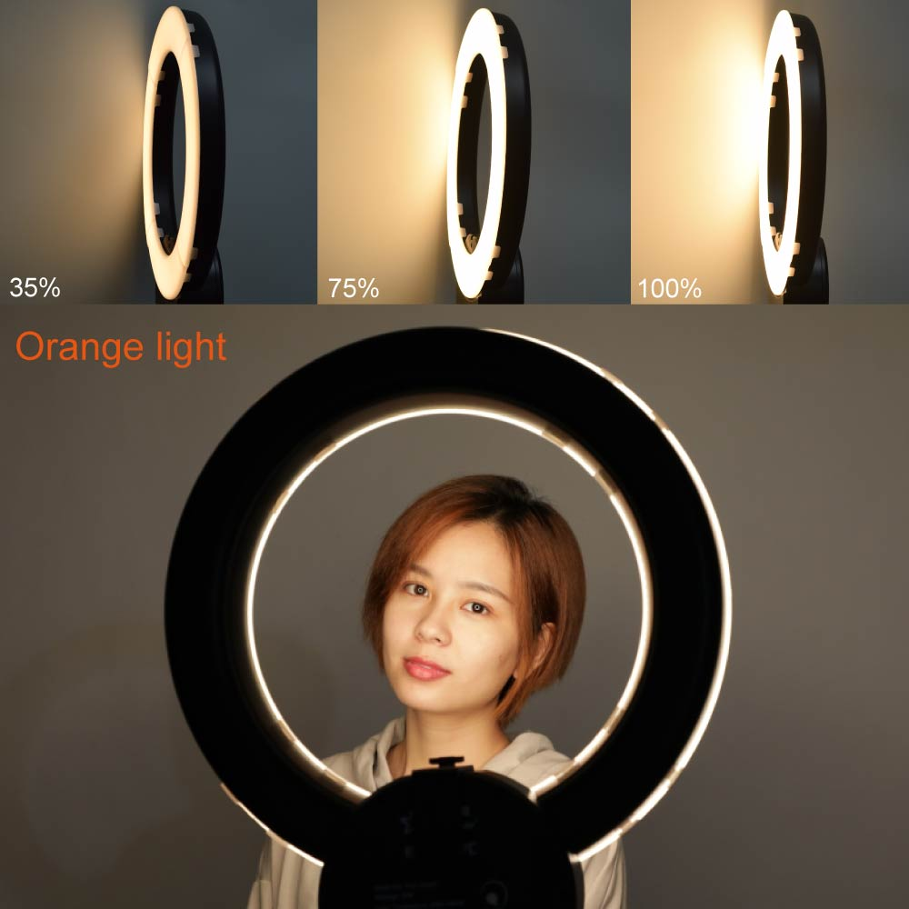 Studio Falconeyes RLE-332VC LED Dimmable Ring Light 32W 42cm 3000K~5600K + 185cm Stand 360 Phone Clamp +Bracket for Selfile