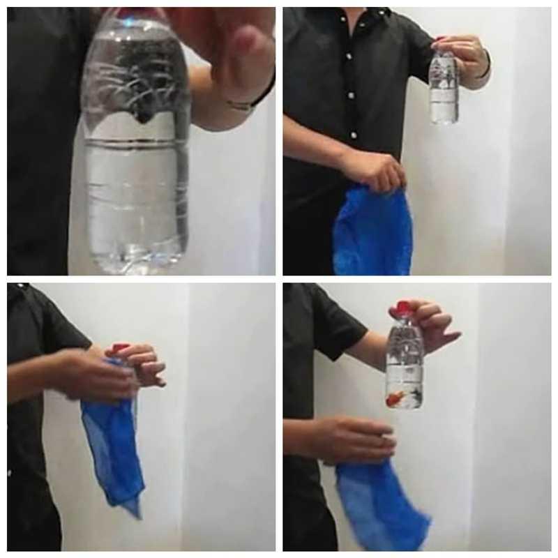 Сценический реквизит магический трюк крупным планом магический сценический трюк Рыба в бутылке невероятное проникновение мгновенное