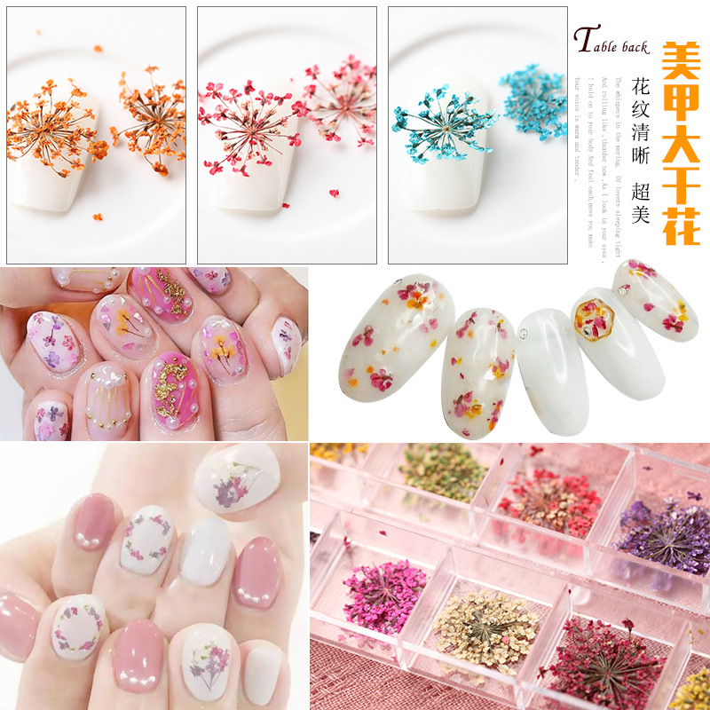 Potpourri Fai Da Te.Mix Colors Nail Art Nature Dry Flowers Set Gel Polish Tip 3d Diy