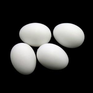 6 Pcs Plastic Poultry Feeding