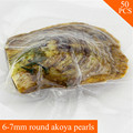 wholesale 50pcs vacuum-packed oysters with 6-7mm round akoya pearls