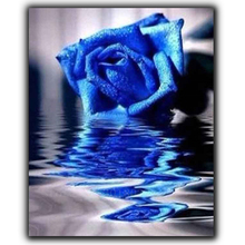 цена 5D Diy Diamond Painting Cross Stitch Blue Rose On The Water Needlework 3D Diamond Embroidery Full Round Mosaic Decoration Resin  онлайн в 2017 году