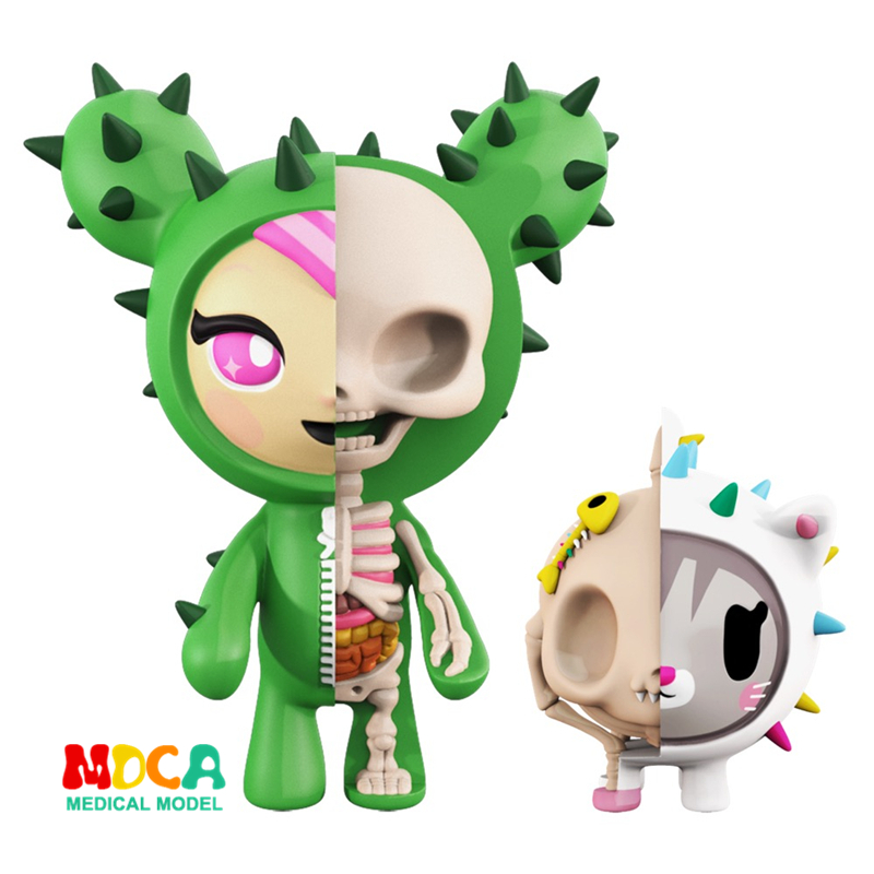 Cacti Mighty 4D XXRAY master Mighty Jaxx Jason Freeny anatomy Cartoon ornament pink unicorn 4d xxray master mighty jaxx jason freeny anatomy cartoon ornament