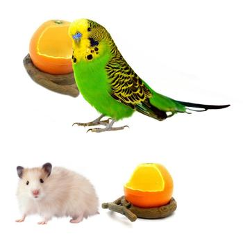 Fruit Shaped Feeding Bowl Bird Feeder For Garden Pet Feeders Food Container Drinking Bowls For Parrot Hamster Little Animals 1