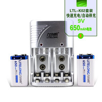 무료 배송 2 pcs 9 v 650 mah 니켈 수소 충전식 9 볼트 배터리 + 9 v 니켈 수소 배터리 충전기