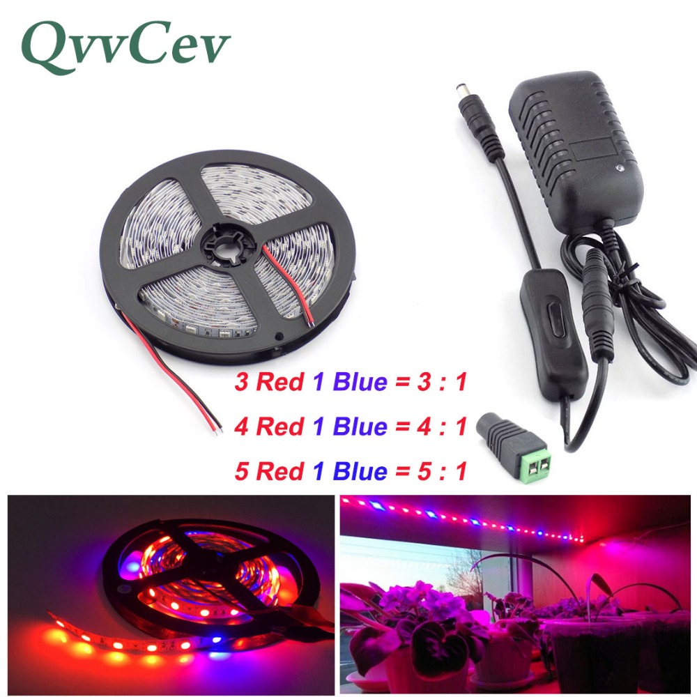 Qvvcev Led Strip Growing Plant Light 2M 3M 5M DC12V 2A/3A Red Blue Lighting Waterproof SMD5050 Grow Lights Power Adapter+Switch