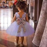 Dziewczynka Chrzciny Suknie Backless Koronki Lato Niemowląt Formalne Suknie dla dziewczyny 1 2 3 4 5 6 Lat Newborn Chrzest sukienka