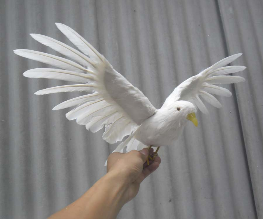 45x28cm simulation Bird feathers dove toy spreading wings white bird of peace model home decoration filming prop h1082 bwl 01 tyrannosaurus dinosaur skeleton model excavation archaeology toy kit white