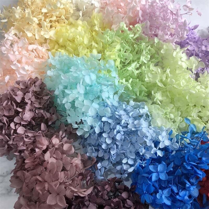 4-4,5 г/лот натуральные свежие консервированные цветы, сушеные маленькие листья гортензии, цветочные головки для «сделай сам», реальные вечны...