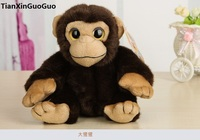 high quality goods about 18cm cute brown monkey orangutan plush toy soft doll baby toy birthday gift s0329