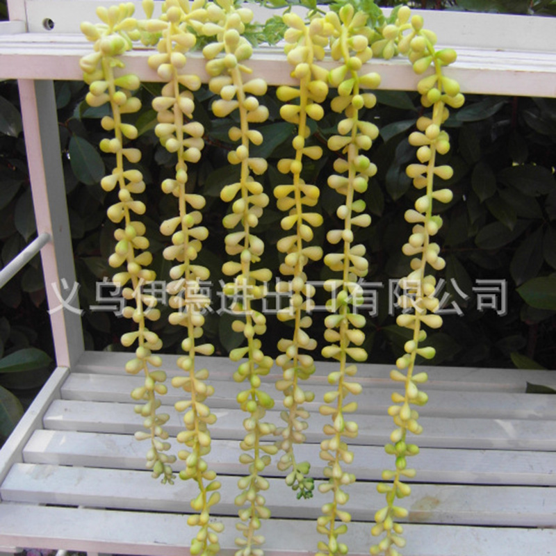 1pc Artificial Succulents Rattans Long Soft Plastic Beads Real Touch Valentines Tears Fake Flowers Wedding Home Decoration D Home & Garden