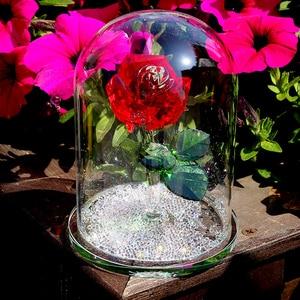 Image 3 - H & D אדום השתמר קריסטל רוז פרח ב זכוכית כיפת קישוט אספנות מלאכת מתנת חג אהבת יום נישואים יום הולדת