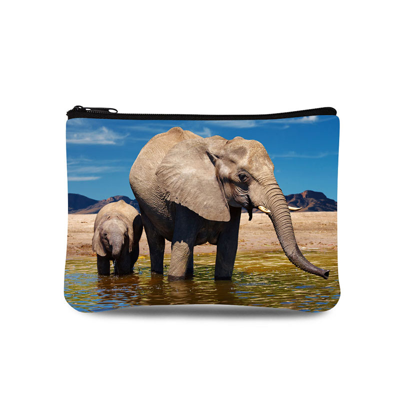 animal picture Printing Ultra Light Brand Women Purse Wallets Coin Purse Mini Bags Zipper Pocket For Girls Waterproof Small Bag
