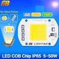 COB Лампа 5 Вт 20 Вт 30 Вт 50 Вт СВЕТОДИОДНЫЙ Чип 220 В 110 В Вход IP65 Смарт IC встроенный Драйвер для прожектор Холодный/Теплый белый