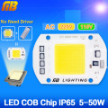 LED COB Bulb Lamp 5W 20W 30W 50W LED Chip 220V 110V Input IP65 Smart IC integrated Driver for flood light   Cold/Warm White