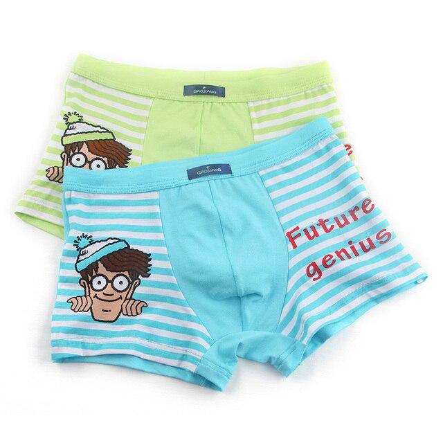 57860e979860 2018 New 2 Pcs/lot Bamboo Fiber Underpants Comfortable Breathable Underwear  Kids boys Boxer for 3-10Yrs Boys Briefs QS1006
