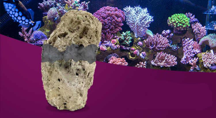 20e1dd123cf0 ... Live rock stone putty fix glue Coral frags sps base aquarium reef tank  sps lps fix ...