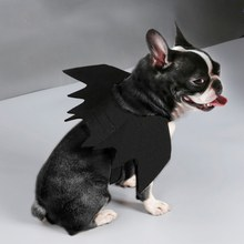 Funny Cute Pet Costume Cosplay Bat Wings for Cat Halloween Clothes Fancy Dress Dogs Cats Playing Pet Accessories(China)