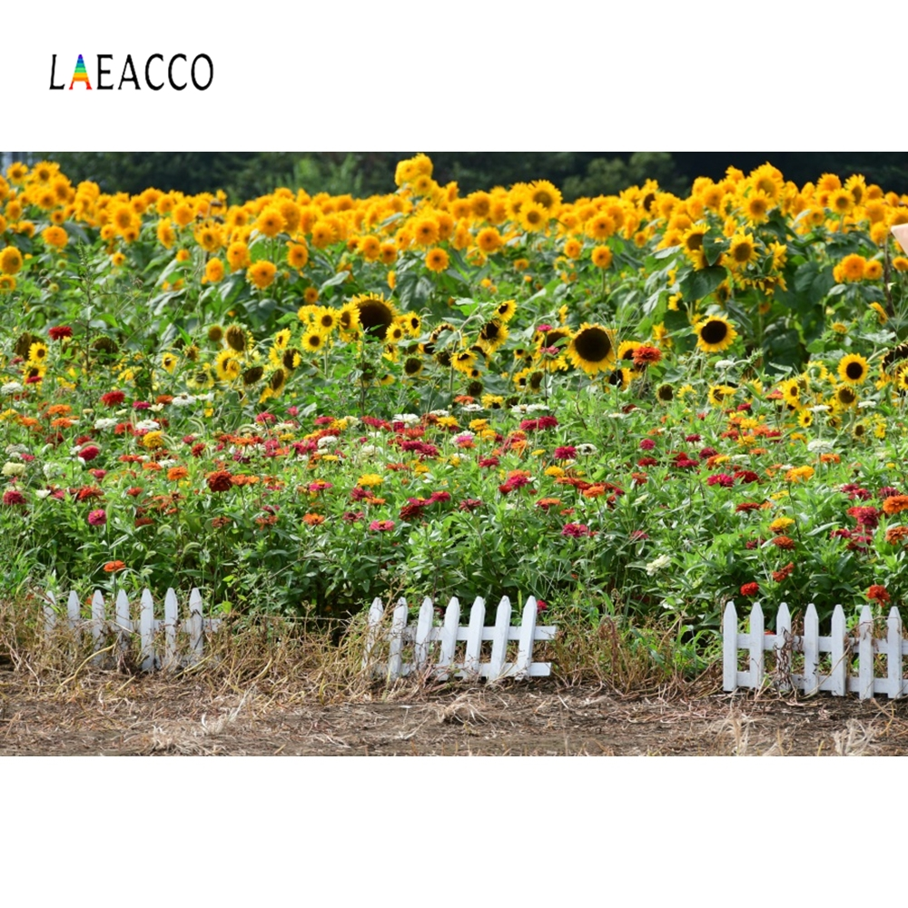 Laeacco Garden Fence Sunflower Flowers Backdrop Photography Backgrounds Customized Photographic Backdrop For Photo Studio in Background from Consumer Electronics