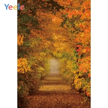 Yeele Romantic Forest Road Wonderful Scenery Autumn Photography Backgrounds Personalized Photographic Backdrops For Photo Studio blair mcdowell romantic road