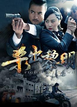 《杀出黎明》2015年中国大陆电视剧在线观看