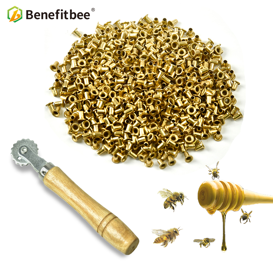 Benefitbee Embedder Tool 1000pcs Mellifera Beehive Nest Box Threading Hole Nest Box Nest Foundation Copper Eye Beekeeping Tools