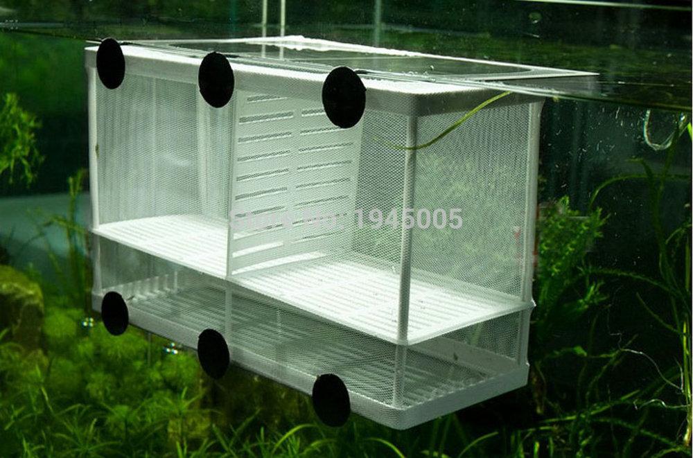 Fish breeding net boxes aquarium hatchery incubator for Fish breeding net