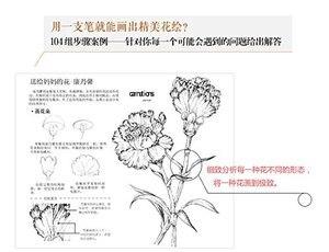 Image 2 - סיני קו ציור ציור ספר/פרחי עט עיפרון לבן שחור סקיצה ציור אמנות ספר