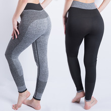 yoga pants seamless/gym/sport/yoga leggings sport women fitness gym shark femme push up Nine