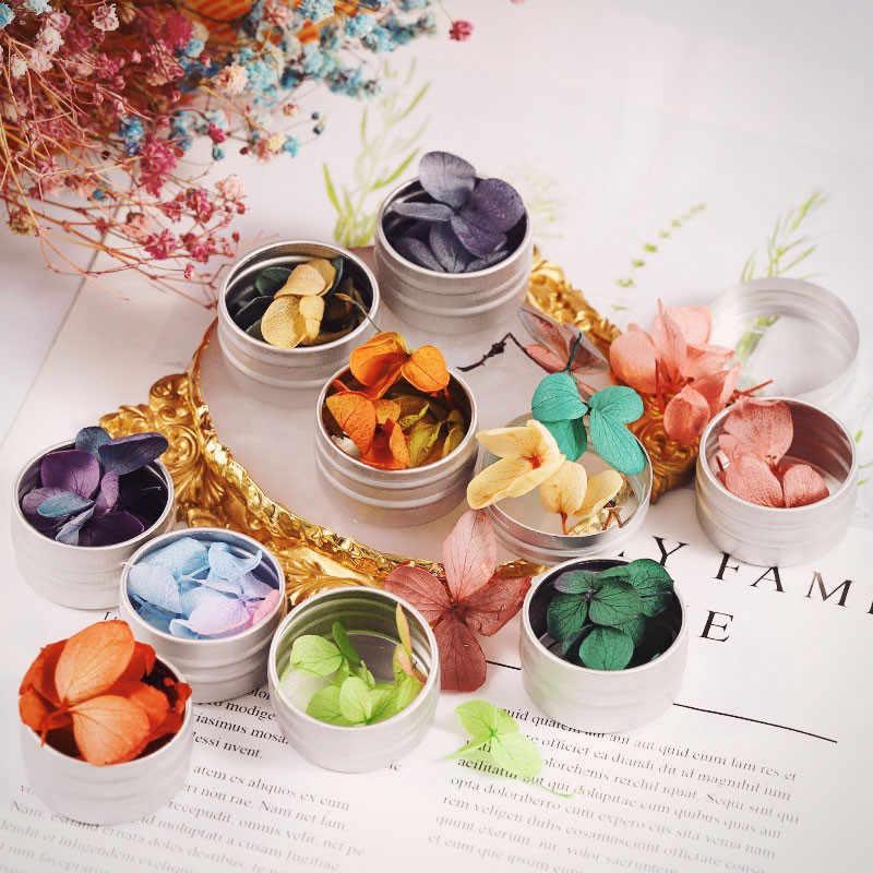 Ferramentas unhas Nail Stickers 12 Cores Real Seco Unhas Adesivos DIY Decoração Da Arte do Prego Manicure Flor Natural Profissional July9